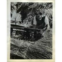 1942 Press Photo Eileen Laxon thatche are used to protect hay-ricks from wheathe