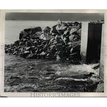1958 Press Photo Spring Creek Hatchery-Washington - orb98495