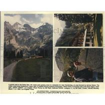 1993 Press Photo Gravel Road in Swiss Alps Leads Past Grazing Cows to an Inn
