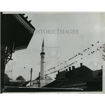 1935 Press Photo Birds on Telegraph Wires in Sarajevo, Yugoslavia (Serbia)