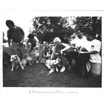 1994 Press Photo Dog Club at Spy Pond
