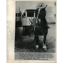 1965 Press Photo Champaign, Illinois Urbana Pure Milk Co. Horse Cart - ftx01145