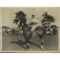 1927 Press Photo Devereaux Milburn Veteran American Polo Star to Captain Team