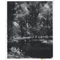 1964 Press Photo Ponce de Leon Springs