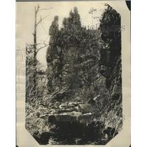 1929 Press Photo stream in Shenandoah National Park in Virginia - sbz00764