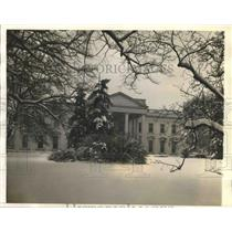 1941 Press Photo Snow-laden branches around the White Houe - sbx02289