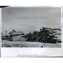 1965 Press Photo Snow covered logs at Veneer Mill, Michigan - mja54968