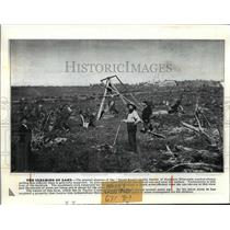 1895 Press Photo Pulling stumps in Northern Wisconsin in a promotional survey