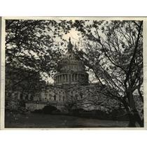 1933 Press Photo Cherry Blossoms at the Washington, D.C. Building - mja55762