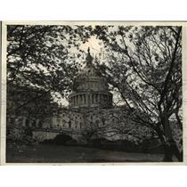 1933 Press Photo Cherry Blossoms at the Washington, D.C. Building - mja55762