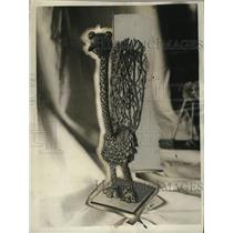 1926 Press Photo Vegetarian bird grown from seeds and shrubs in California Toy