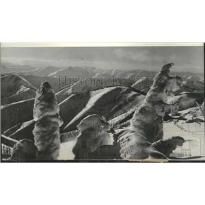 1937 Press Photo Eerie Ice and snow formations on Cemetery Ridge, Idaho