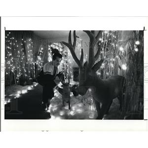 1991 Press Photo Al Petronizio sets up his Christmas display