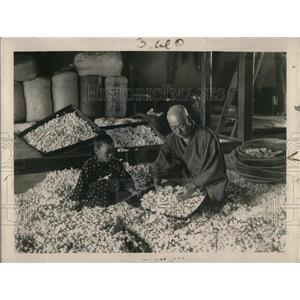 1920 Press Photo Father & daughter busily sorting out thousands of precious silk