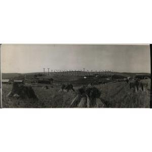 1910 Press Photo Harvest Scenes Young Valley Washington - spa02864