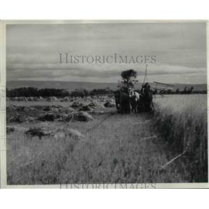 Press Photo Donald Evans on binder at Stephen Woohouse farm Ellenburg - spa03109