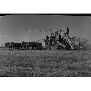 1939 Press Photo Harvest Scene - spa00244