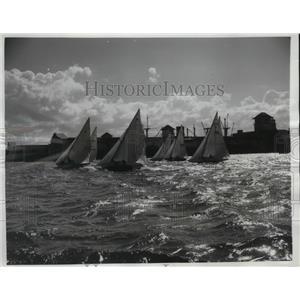 1950 Press Photo Havana Cuba Harbor regatta yacht race - nes49782