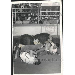 1958 Press Photo Jessie Jones and other wresting cattle at Rodeo - hca03259