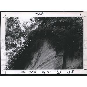 1967 Press Photo Old Aldridge near Boykin Springs in Angelina National Forest