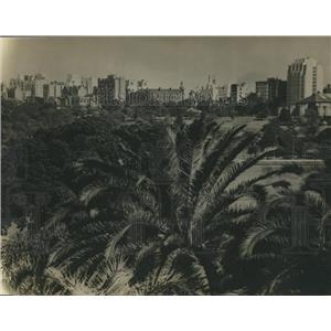 1947 Press Photo Palms, Buildings & Blue Waters of Harbor Lap, Sydney, Australia
