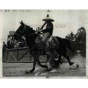 1940 Press Photo Rider Horse Steer Tailing Exhibit