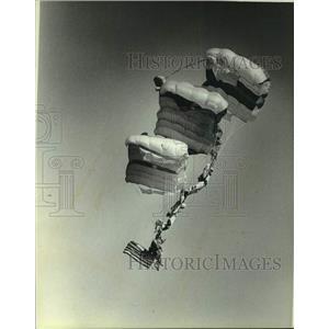 1981 Press Photo Parachute Act at Experimental Aircraft Association Convention