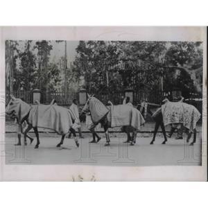 1935 Press Photo Ethiopian troops at Addis Ababa