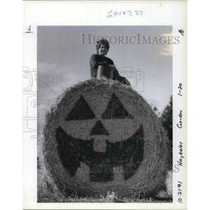 1991 Press Photo Judy Buhler of Dallas sits atop a round bale of hay she painted