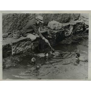 1937 Press Photo Robert Goffin U.S. Bureau of fisheries scientific station Mass.
