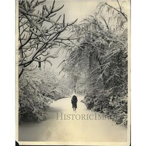 1931 Press Photo Chicago Enjoys 5 Inches in 1st Snowfall - nee09440