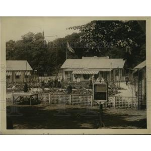 1918 Press Photo Massachusetts Red Cross Food Administration Garden - ftx00301
