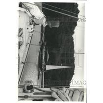 1981 Press Photo Capt Dan Nichoisor Flying Fifty - RRX93465