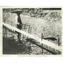 1943 Press Photo Midotzu working at home picking cotton - ney30684
