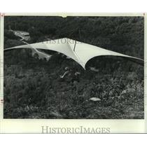 1977 Press Photo Hang glider taking flight - tua00356
