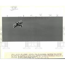 1991 Press Photo Biplane on climb-out lands at Slidell Municipal Airport