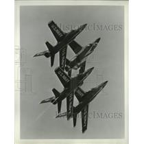 1969 Press Photo U.S. Navy Blue Angles  - mjx68531