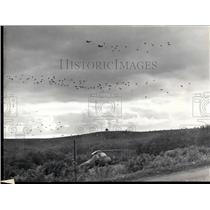 1962 Press Photo 750 Parachutists for Operation Assaf