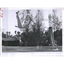 1963 Press Photo Faye Moses Zacchini on a trampoline - RSH98879