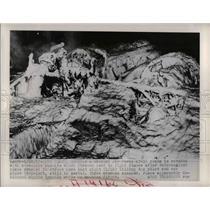 1950 Press Photo Air Force AT-11 Plane Wreckage in Long Beach California