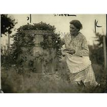 1919 Press Photo A Woman Picking Strawberries from a Barrel Pot