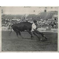 1928 Press Photo Running Steer During Rodeo