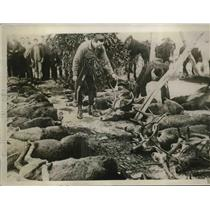 1929 Press Photo King Alfonso of Spain attend deer hunt in Andalusia