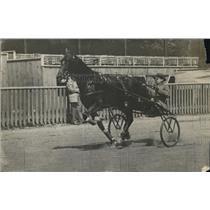 1919 Press Photo West Mallow driving Don de Lopez - nes04050