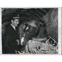 1949 Press Photo Capt. Carroll Latimer Pilot Of EAL Cargo Plane With Horse