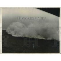 1931 Press Photo Forest Fires - nec37275