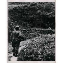 1950 Press Photo An American soldier somewhere in orea