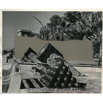 1943 Press Photo Civil War Relic Mississippi River Forts