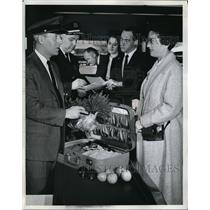 1965 Press Photo Customs inspection at Kennedy Intl airport