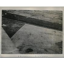 1937 Press Photo View of a Wheat field in Red River Valley Minnesota - nec68781